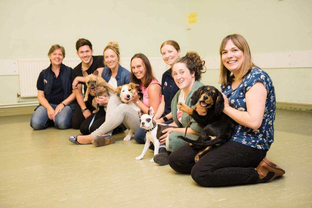 Natures Menu Puppy School Graduation Class – Picture date Wednesday 06 September, 2017 (Leeds, West Yorkshire)    Photo copyright, contact for licensing. For licensed images, credit should read: Jonathan Pow/jp@jonathanpow.com
