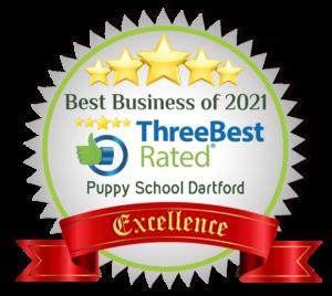 puppyschooldartford-dartford